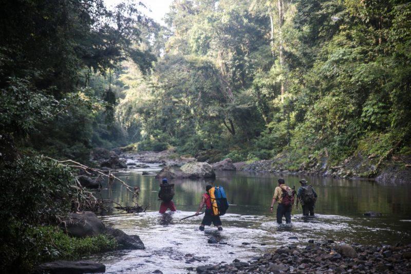 Die besten Urlaubsziele 2019: Natur und Flüsse in Panama