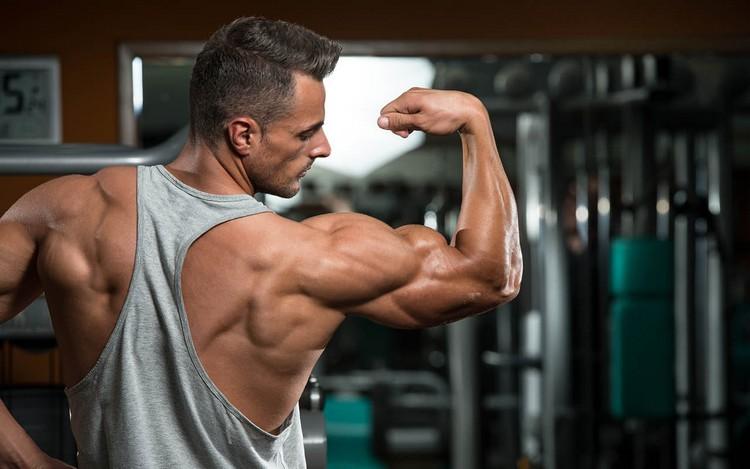 Crossfit Training Muskel aufbauen