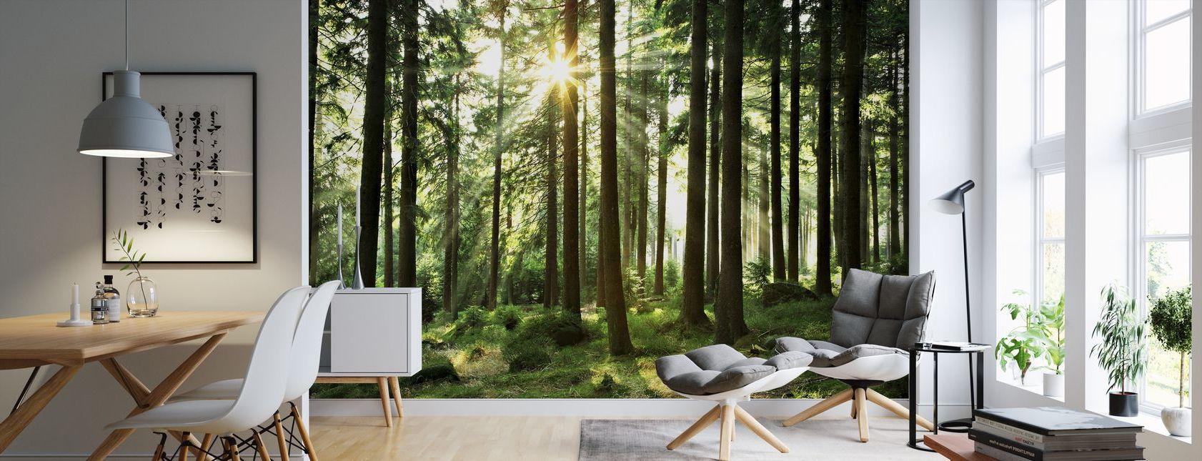 Fototapeten mit Wald Dekor