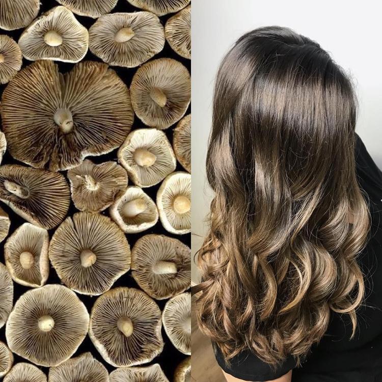 Haarfarben Trends 2019 Pilzbraun eleganter Look