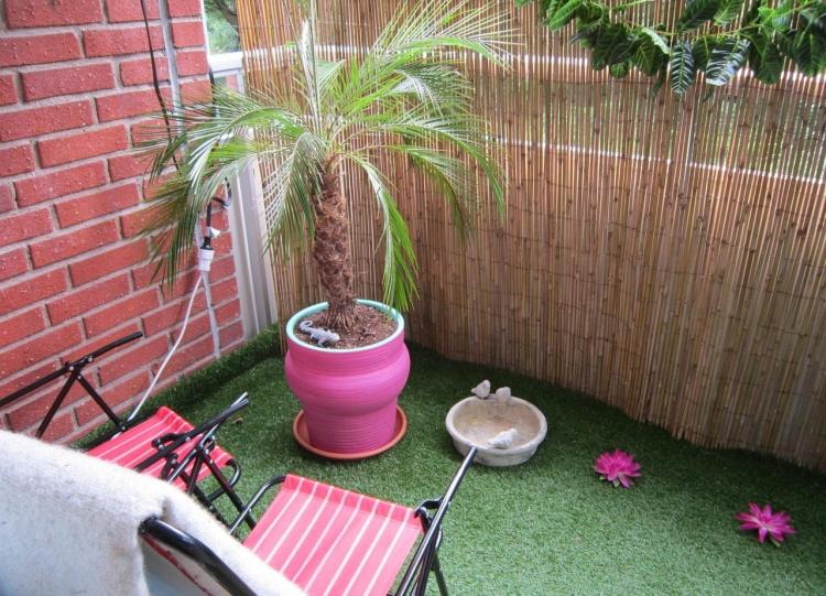 Balkon Sichtschutz Rasenteppich Palme