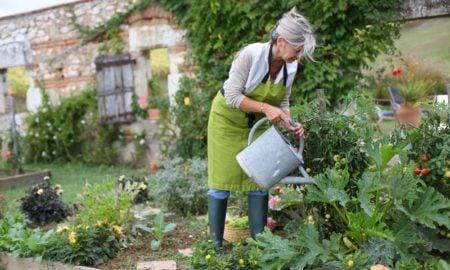 Gemüsegarten anlegen hilfreiche Tipps