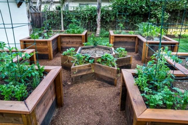 Gemüse anbauen Hochbeete Holz originelle Formen