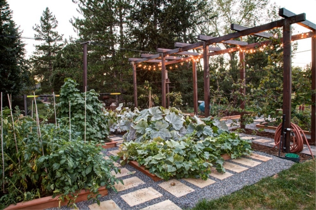 Gemüse anbauen Gartenwege Kies klar strukturiert