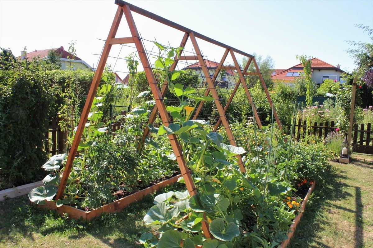 Gemüsegarten anlegen platzsparende Ideen