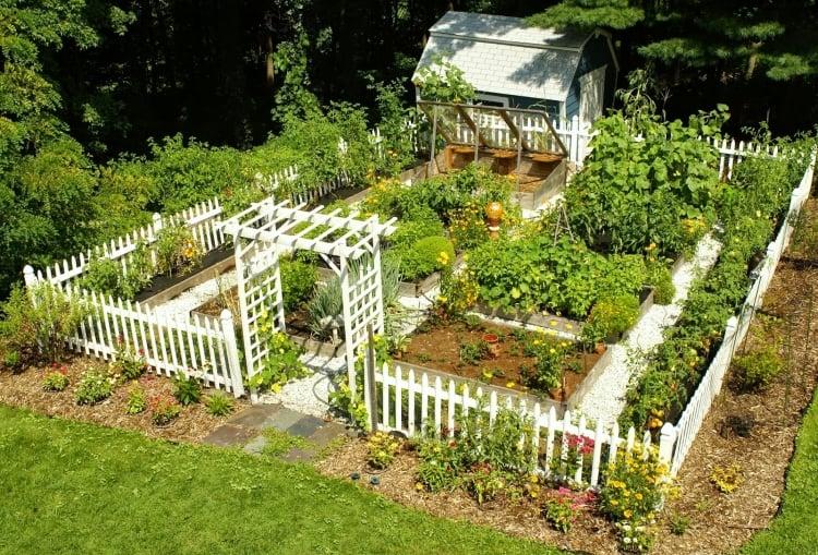 Gemüsegarten anlegen und mit Zaun umranden
