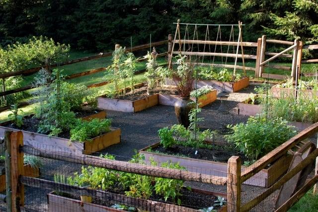 Gemüsegarten anlegen Hochbeete Holz Abstand dazwisch