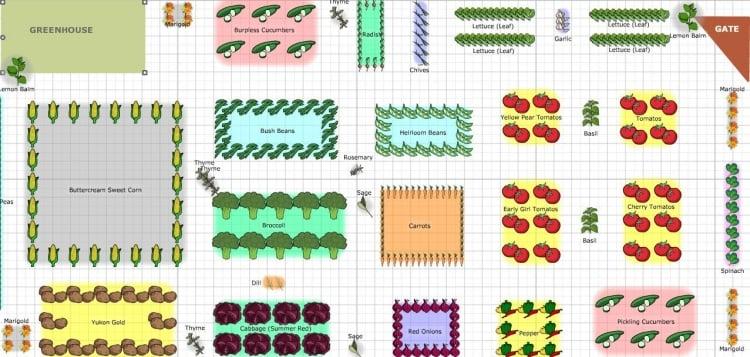 Gemüsegarten anlegen ein Schema zeichnen