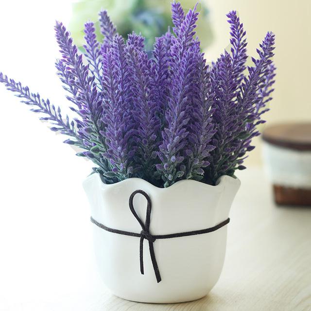 Lavendel pflegelicht Blumentopf