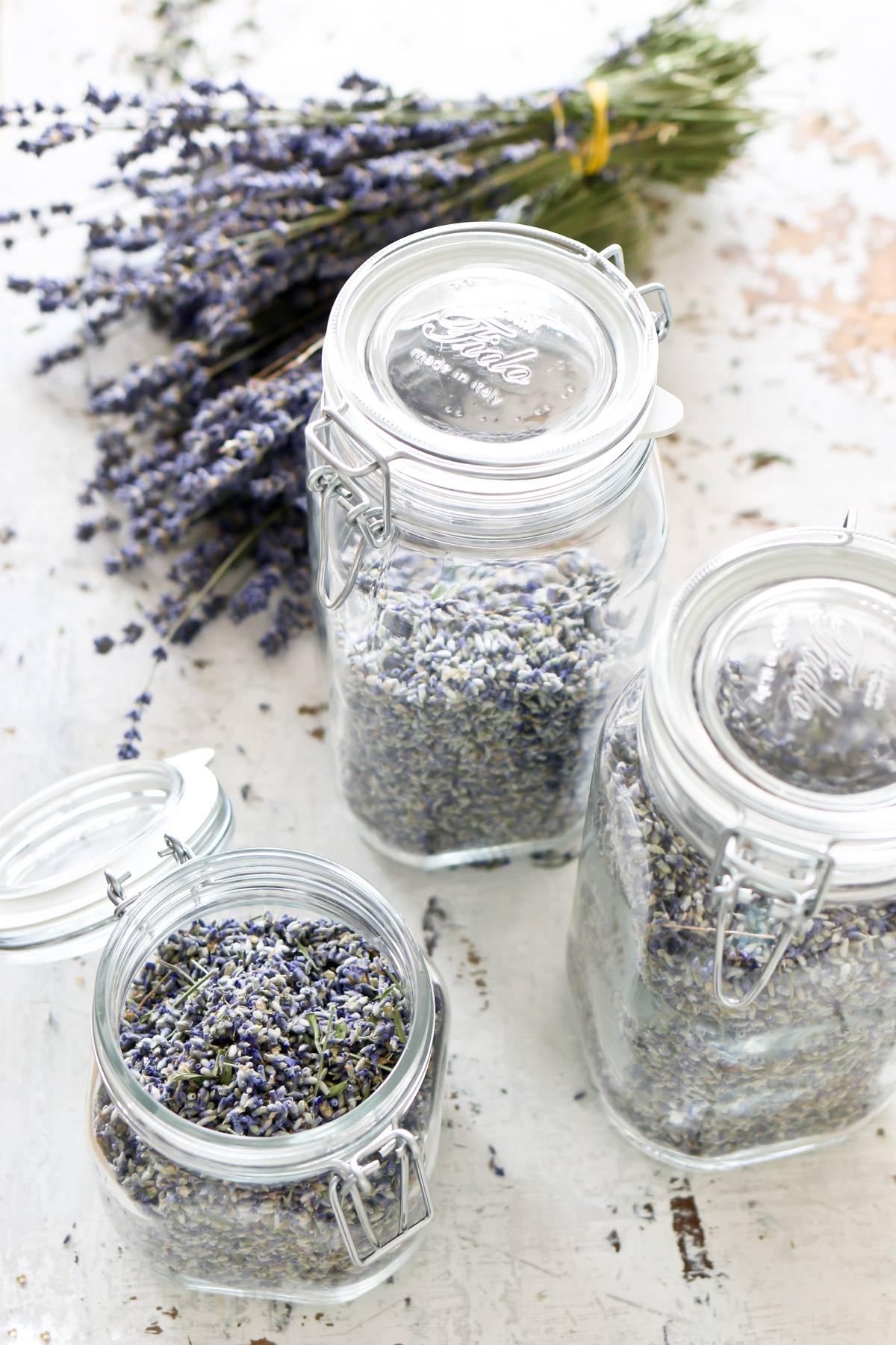 Lavendel trocknen - DIY Deko Ideen mit Lavendel