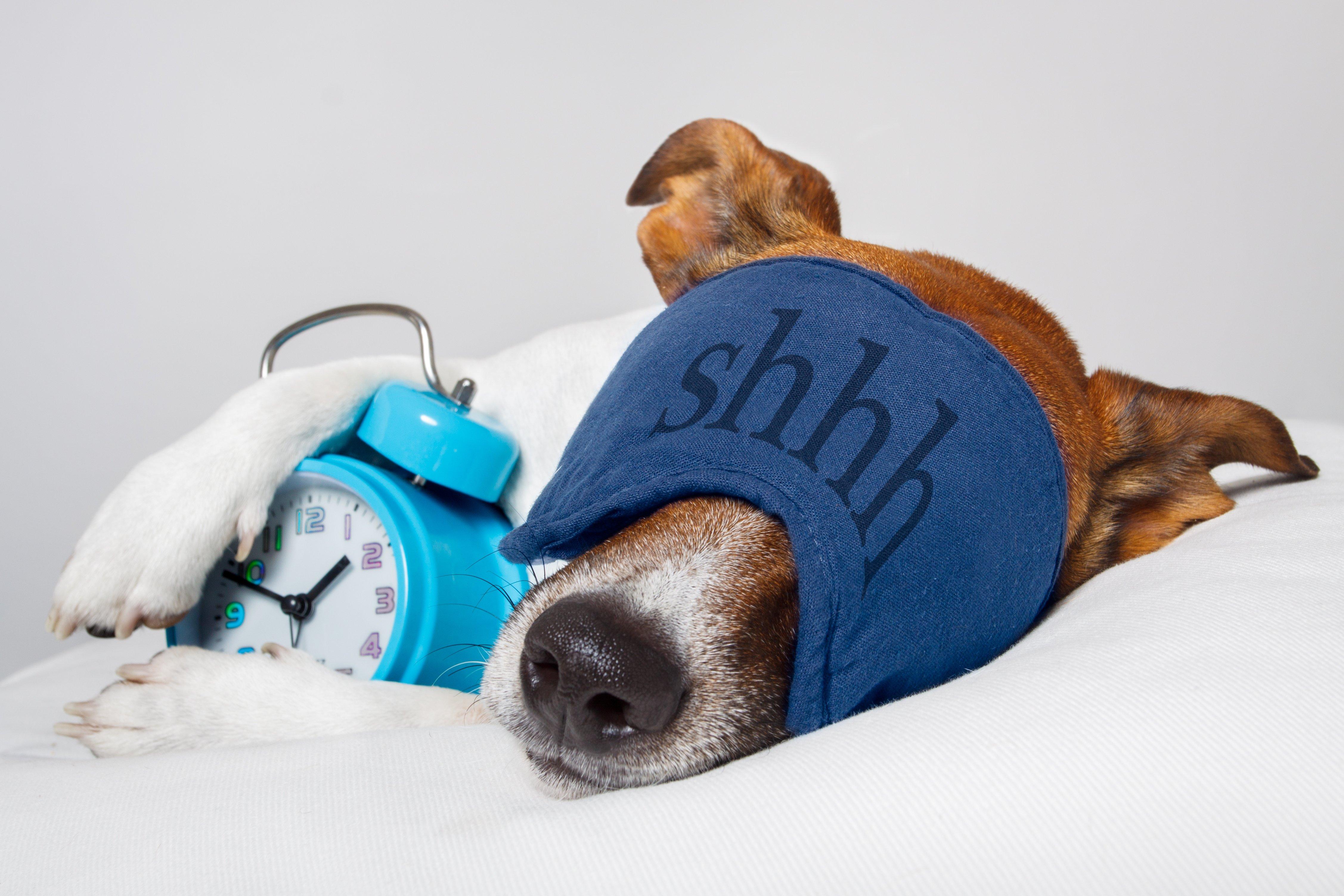 hilfreiche Tipps gegen Schlaflosigkeit