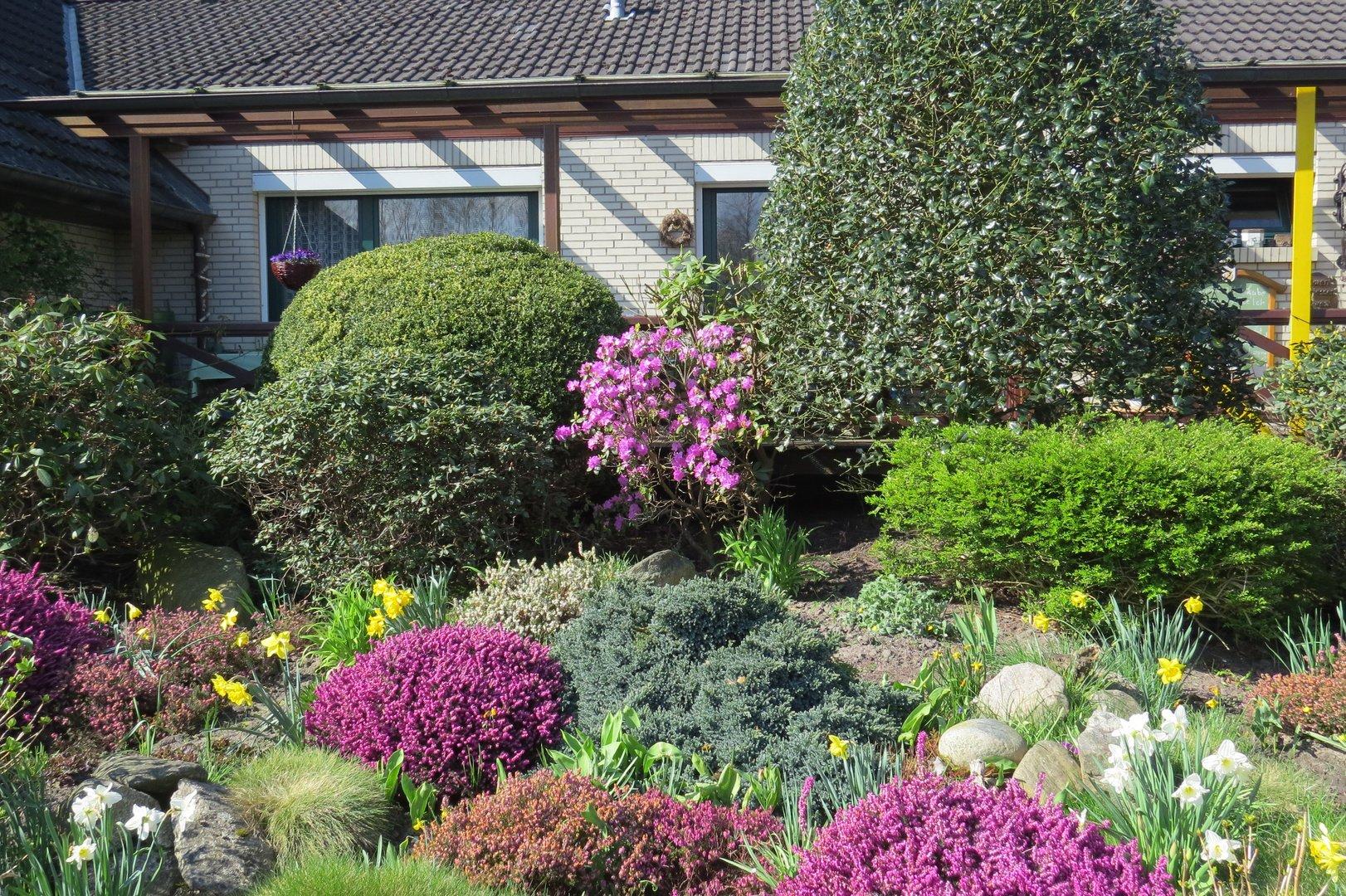 Vorgarten Blumen Büschen herrlicher Look