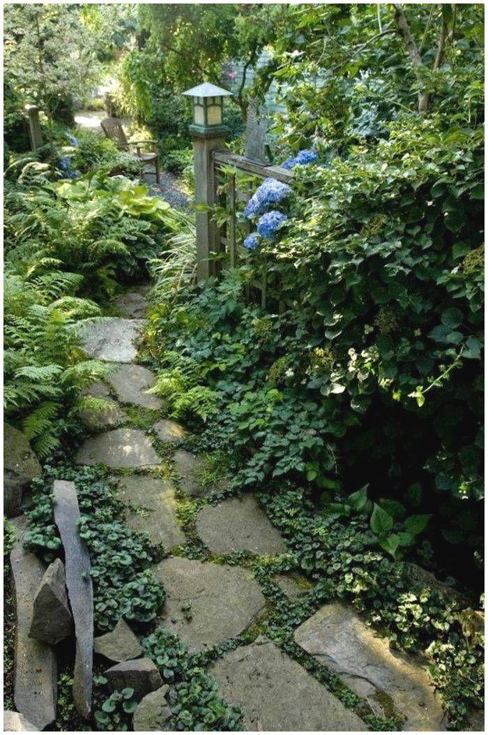 Vorgarten in eine grüne Oase verwandeln