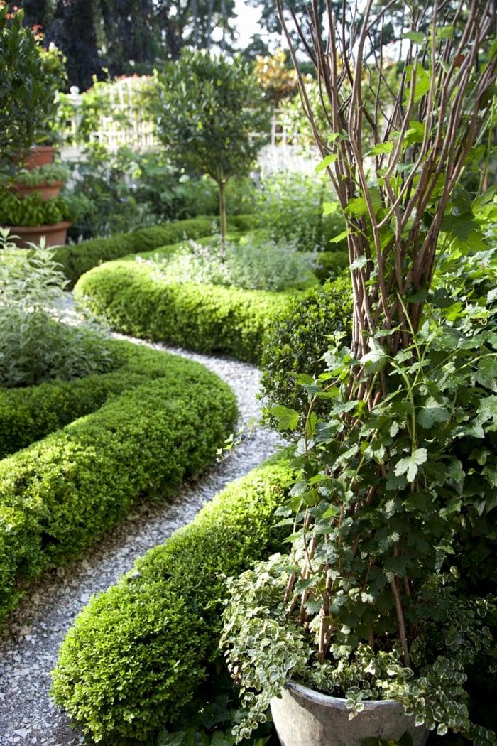 Vorgartengestaltung Gartenweg immergrüne Hecke