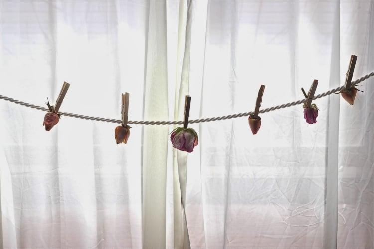 Girlande aus getrockneten Blumen Fenster