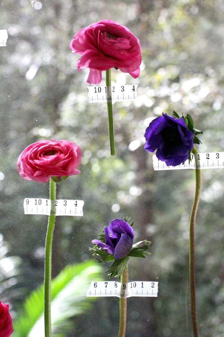 Fensterdeko Frühling Blumen kleben Fensterscheibe