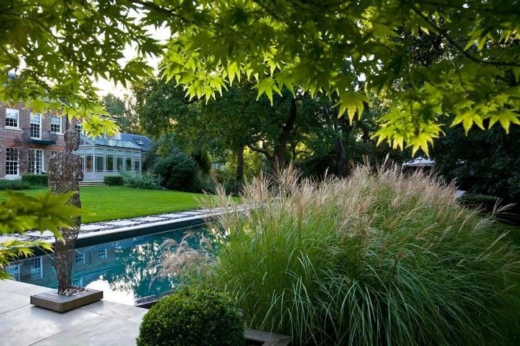 Pool im Garten Pampasgräser stilvoller Look