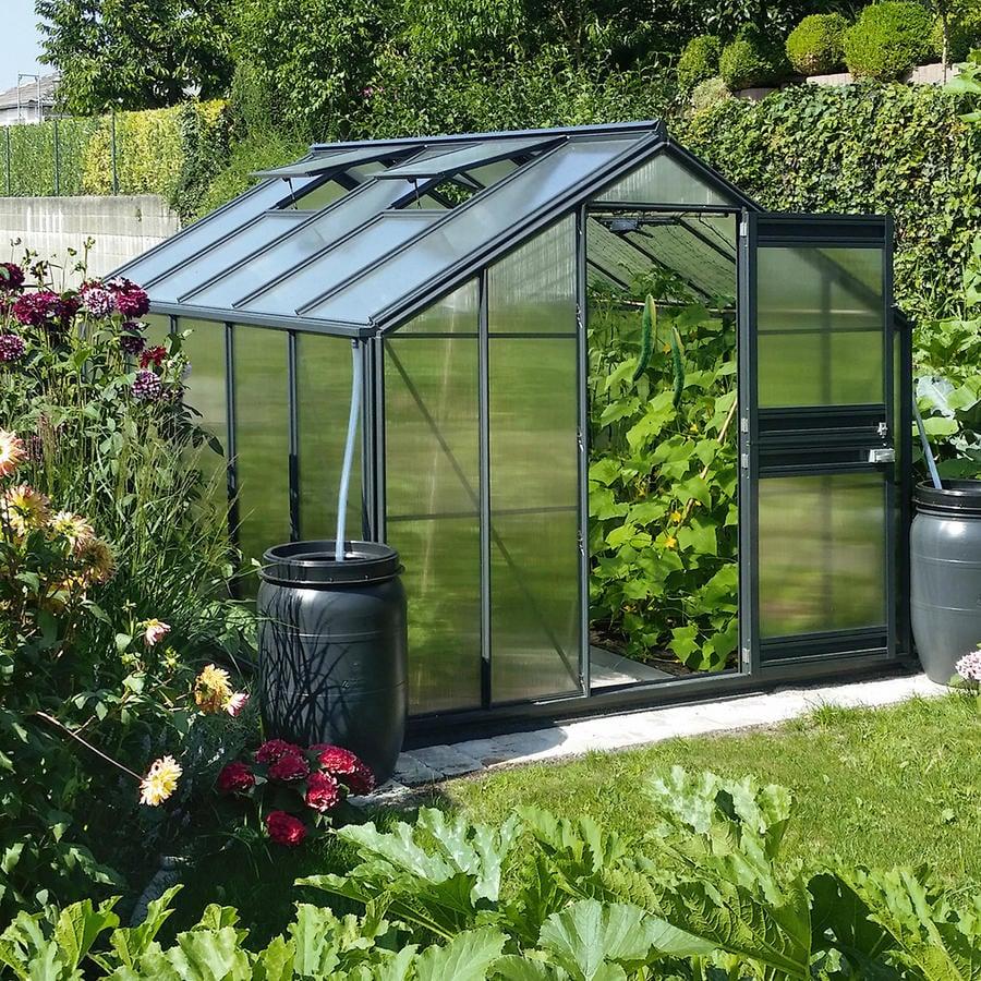 DIY Treibhaus Gemüse anbauen
