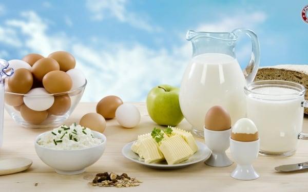 Milchprodukte essen Diätplan Paleo