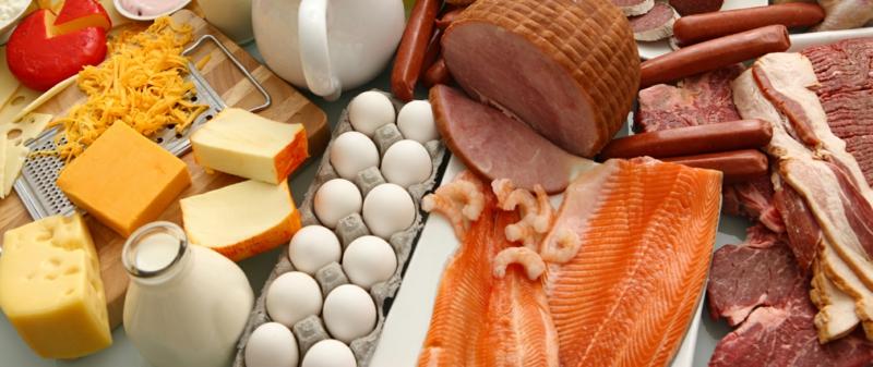 Steinzeit Diät Grundnahrungsmittel Fleisch Eier