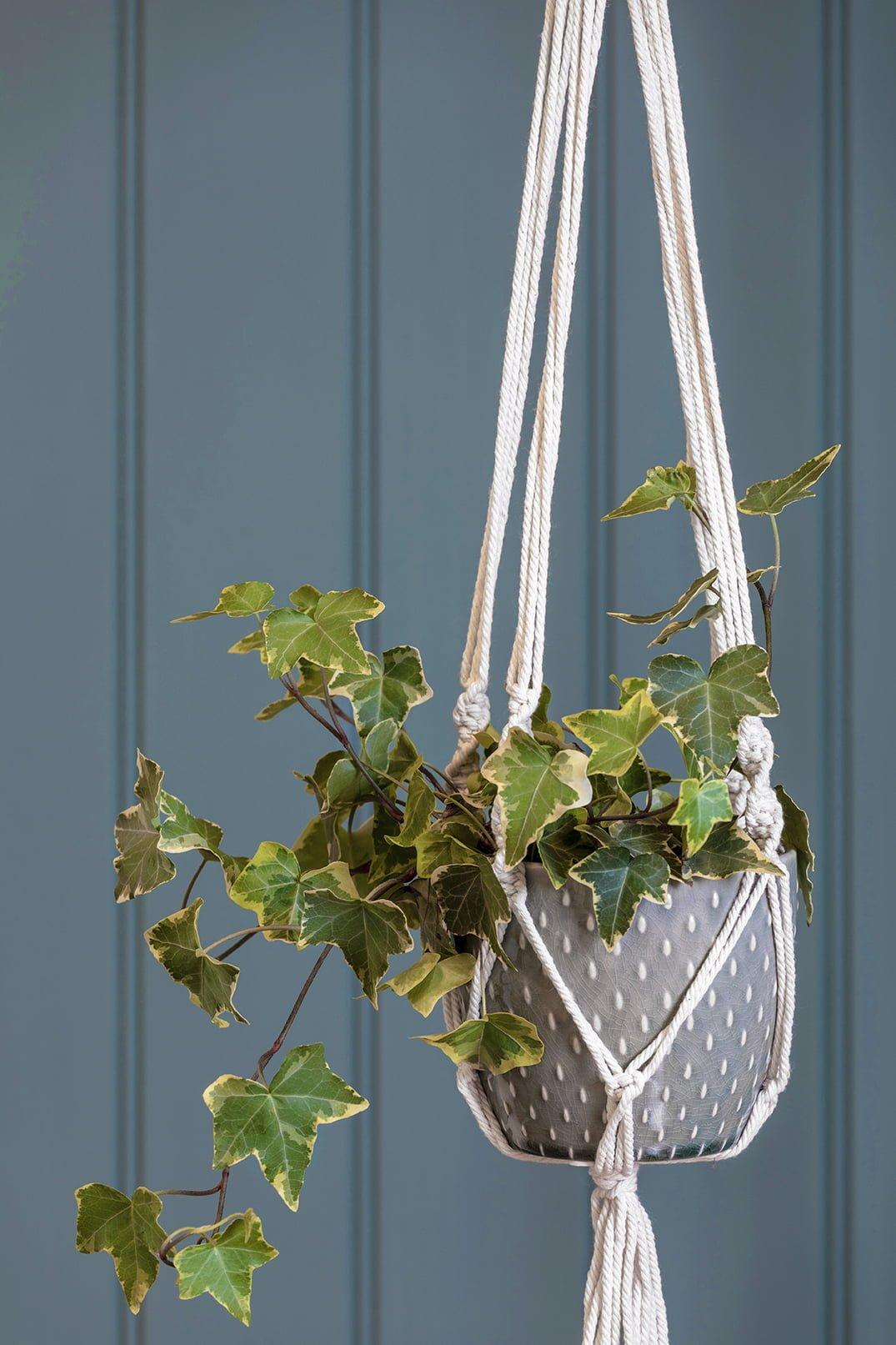 hängende Blumentöpfe DIY