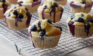 vegane Muffins mit Blaubeeren
