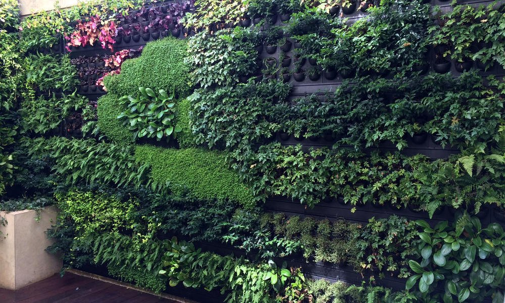 grüne Fassade vertikaler Garten gestalten Tipps