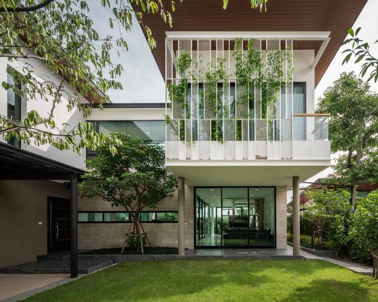 grüne Fassade Nachteile