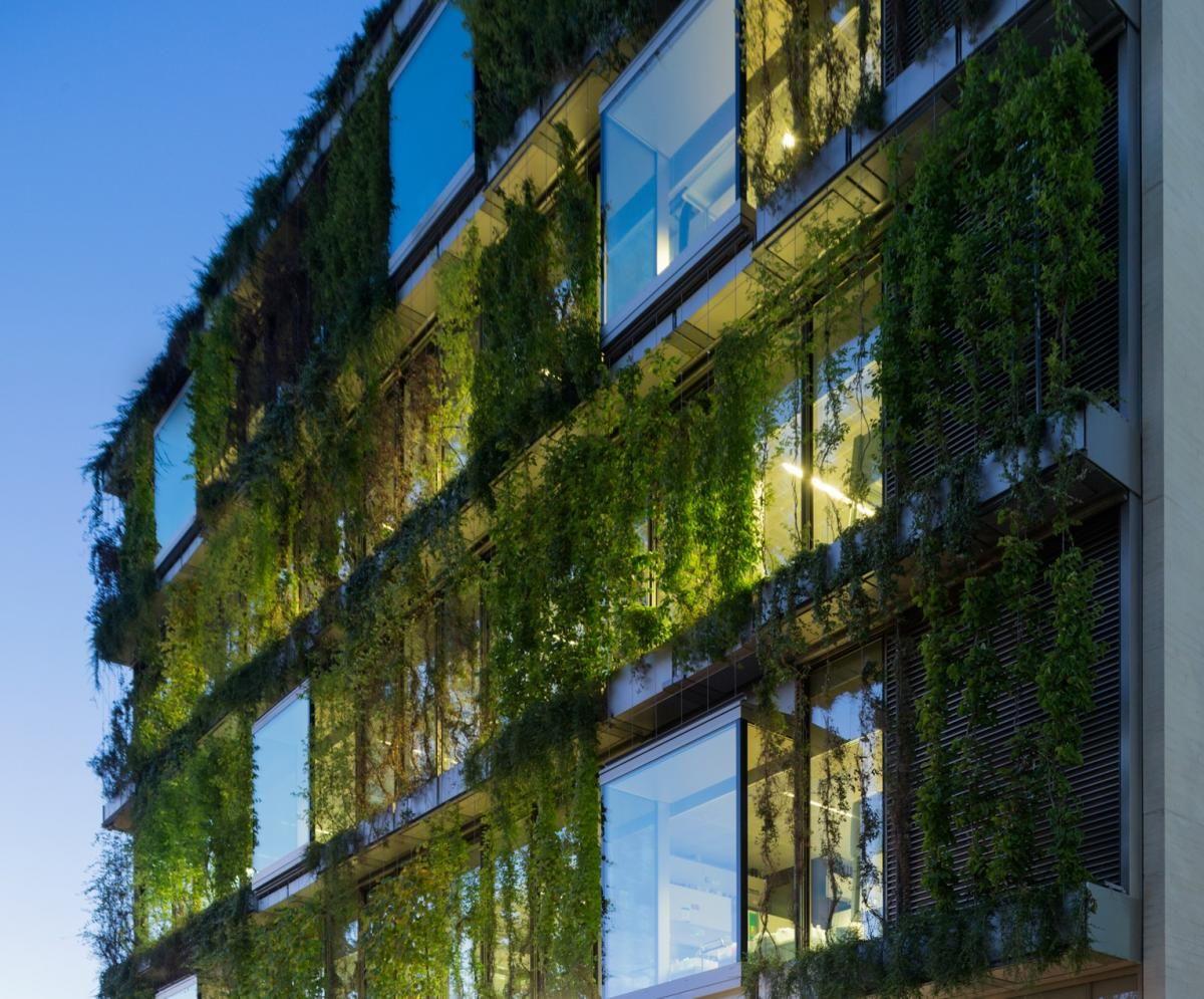 grüne Fassade in der Stadt tolle Idee