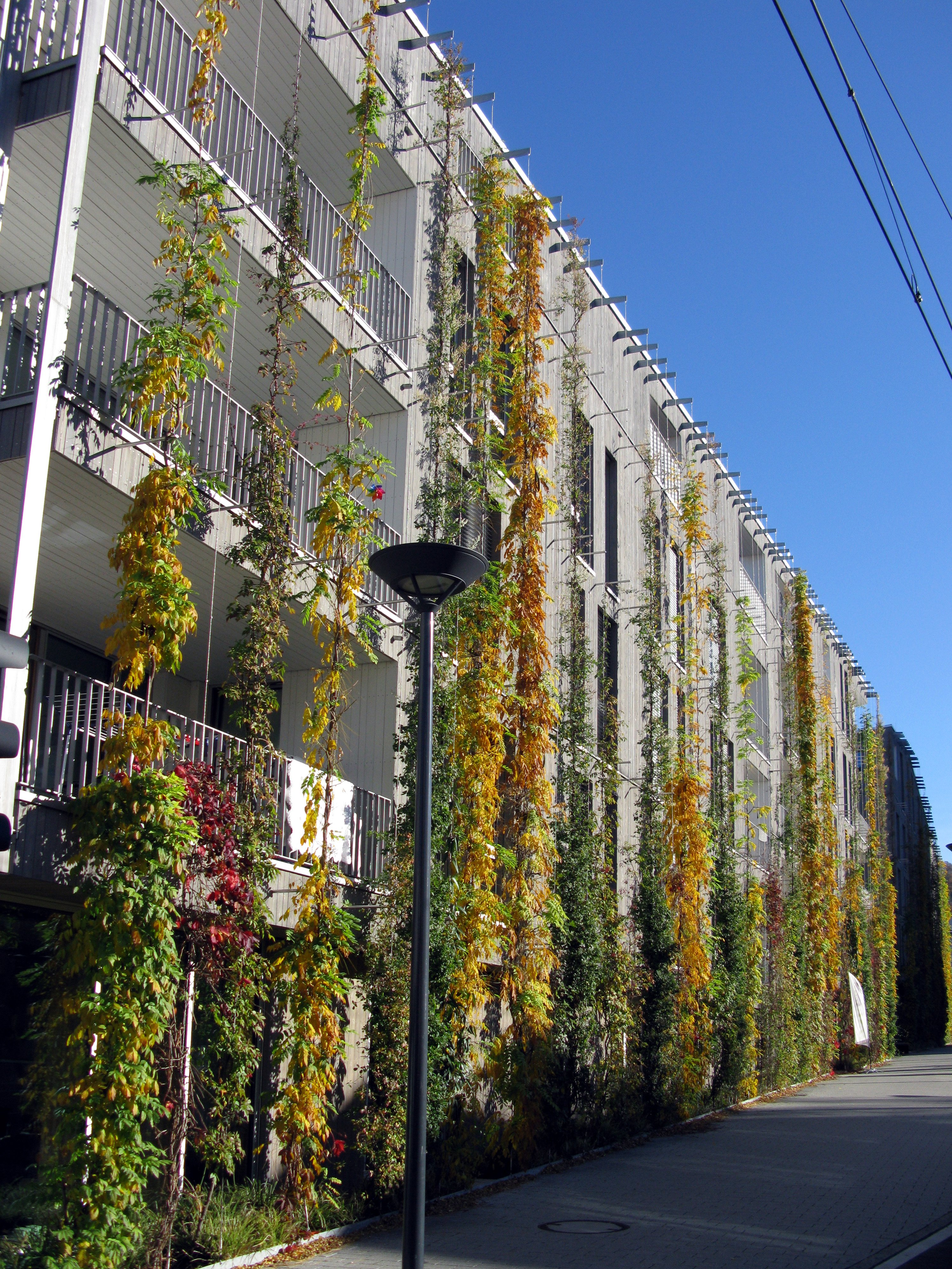 Fassade begrünen Stadt tolle Idee