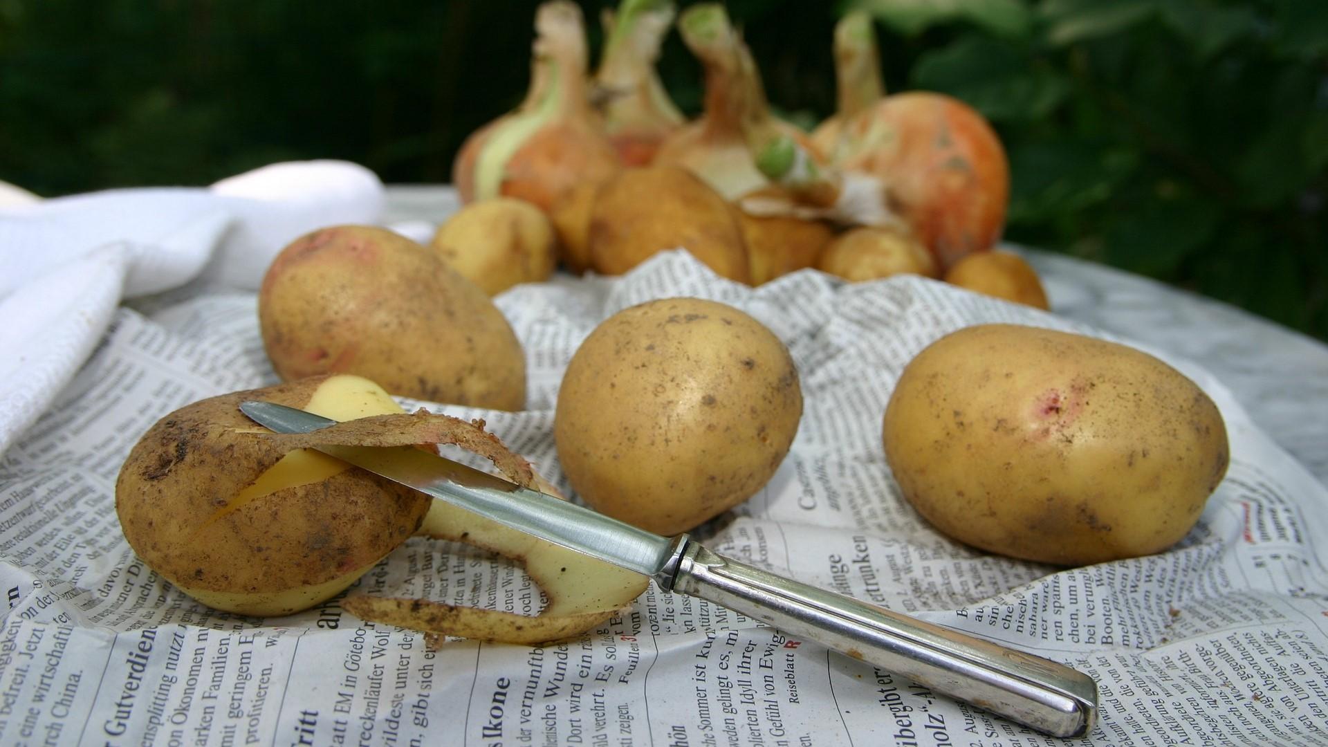 Kartoffeln kochen putzen hilfreiche Tipps