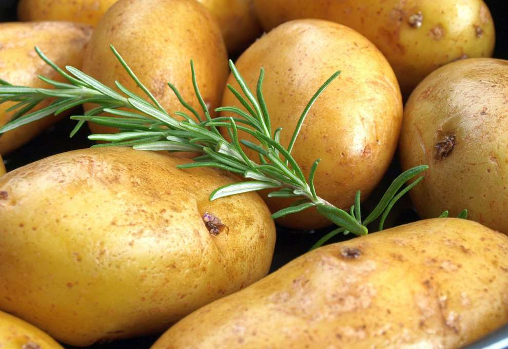 Kochtipps Erdäpfel Sorten festkochend mehlig kochend