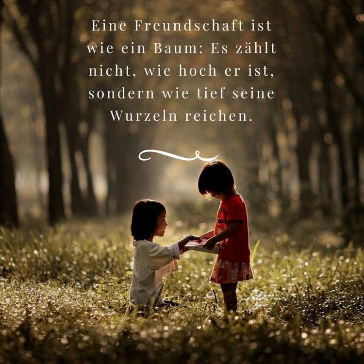 Spruch die Freundschaft ist wie ein Baum