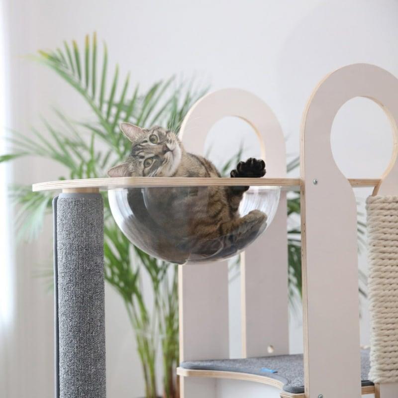 Katzenbaum DEsigner Aussichtsplattform Halbkugel transparent