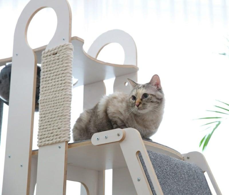 Katze Kratzbaum Rusche modern