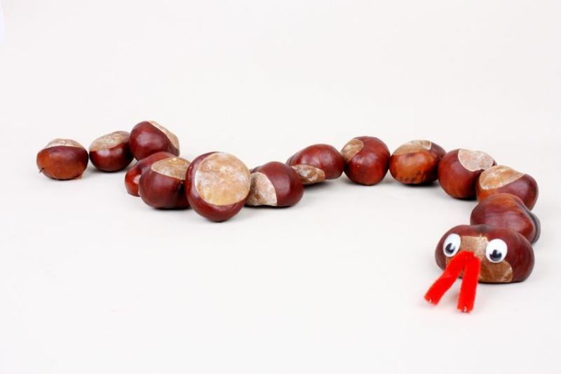 Schlange machen aus Kastanien