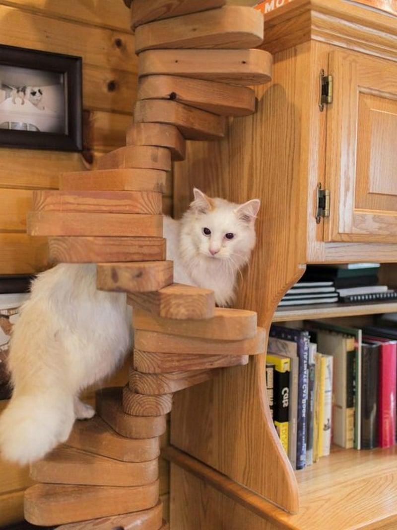 Kratzbaum aus Naturholz Plattformen Katze