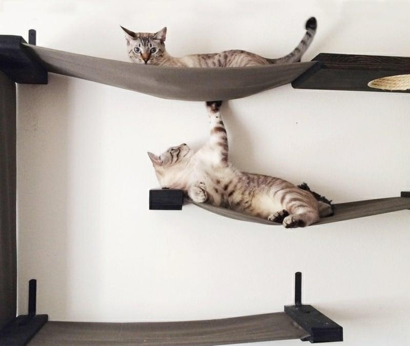 Spielplatz Katzen tolle Gestaltungsideen