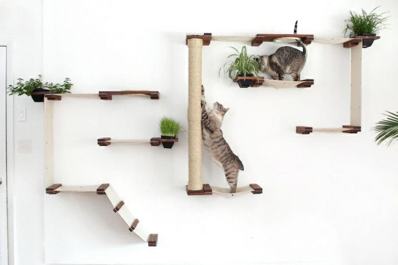 Kratzbaum an der Wand montieren tolle Idee