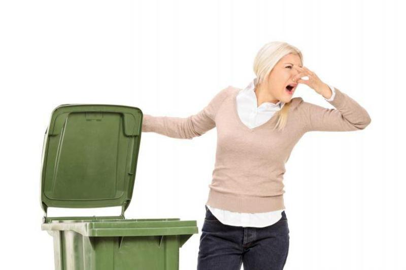 Abfalleimer reinigen üble Gerüche neutralisieren
