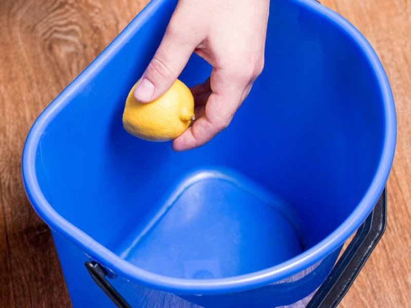 Abfalleimer mit Zitrone einreiben