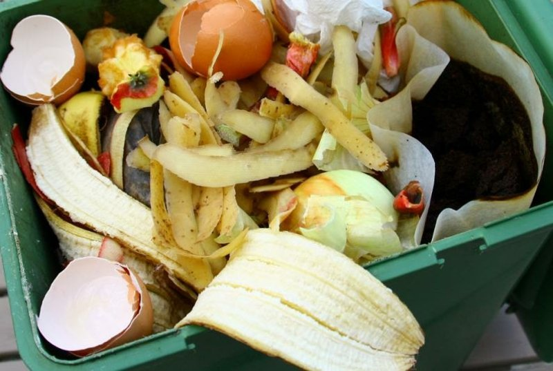 Mülleimer Küche organische Abfälle