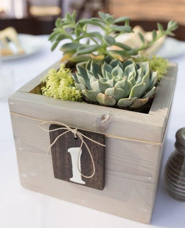 Holzkiste mit Sukkulenten Tisch dekorieren