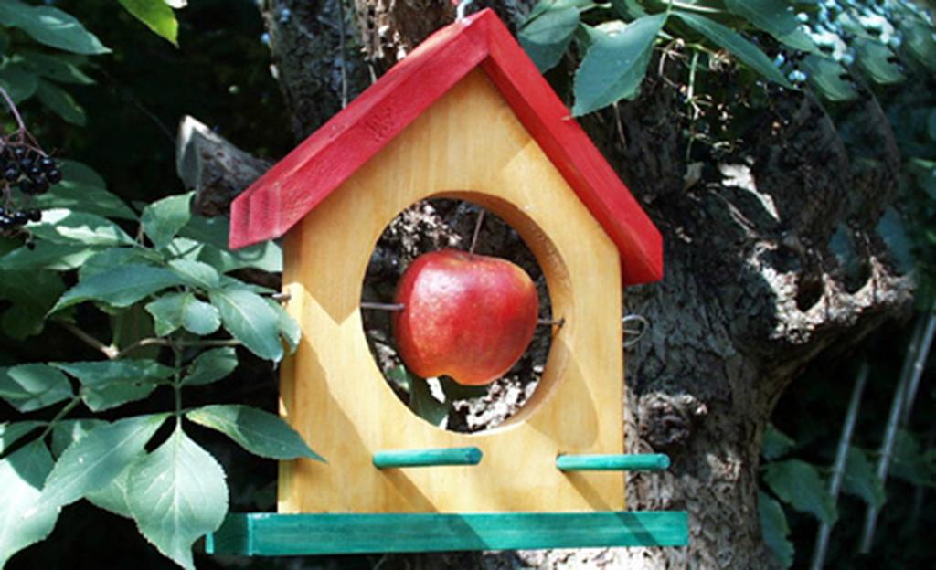 Vogelhaus Holz Apfel DIY