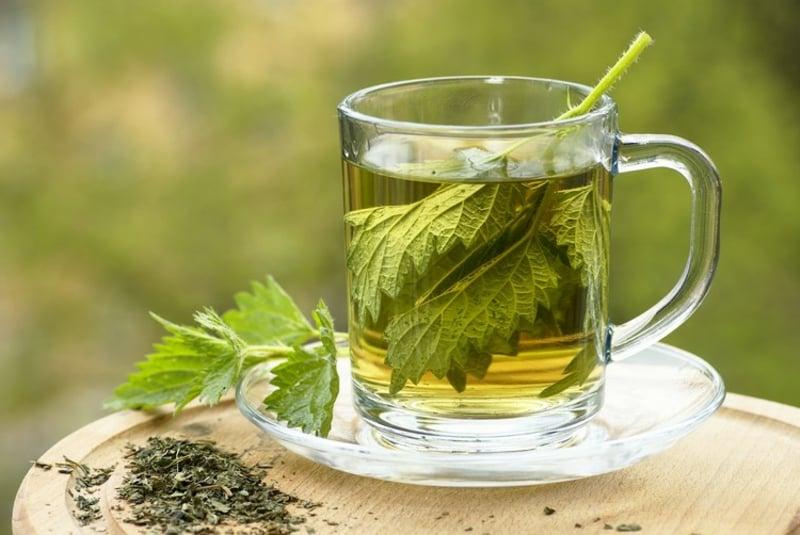 Detox Tee Brennessel Abnehmen