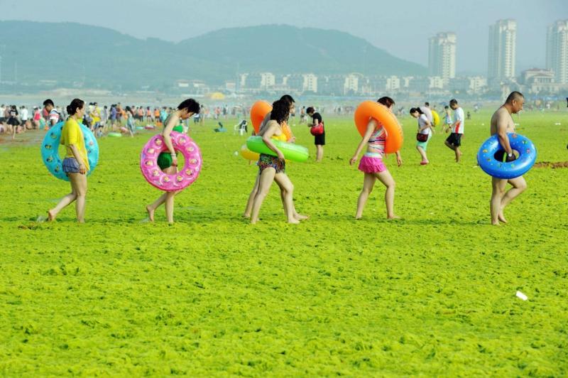 Bilder zum Nachdenken Strand Stadt Rasenfläche