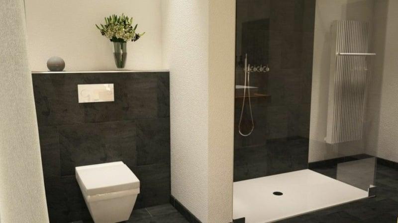 offener Duschbereich Trennwand Toilette