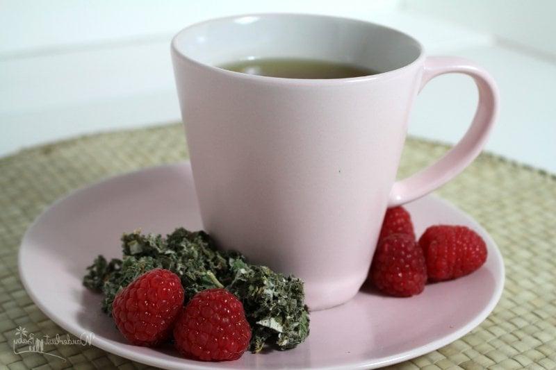 Schwangerschaft Tee Himbeerblättertee