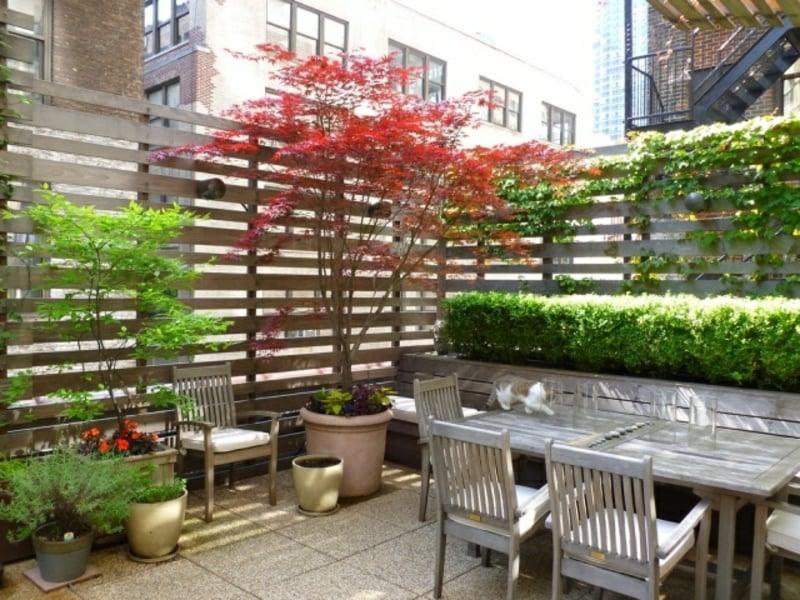 Balkonpflanzen Baum dekorativ