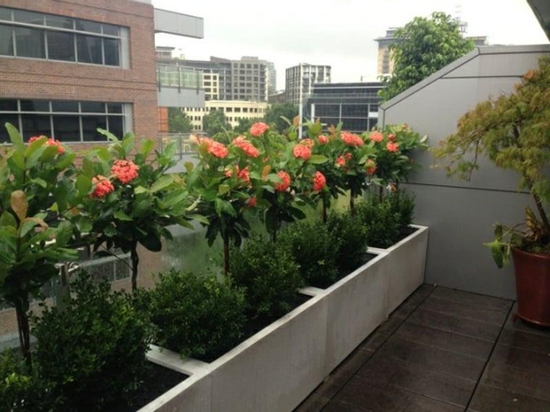 Blumentöpfe Balkongeländer Pflanzenkübel Beton